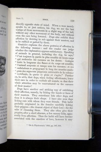 Image of Darwin-F1142-1872-119