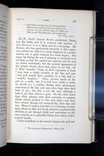 Image of Darwin-F1142-1872-121