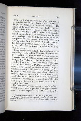 Image of Darwin-F1142-1872-133