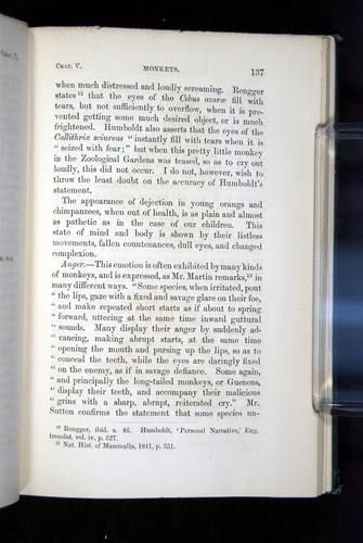 Image of Darwin-F1142-1872-137