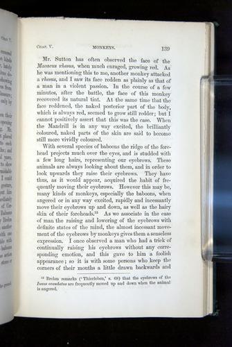 Image of Darwin-F1142-1872-139