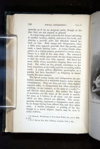 Image of Darwin-F1142-1872-140