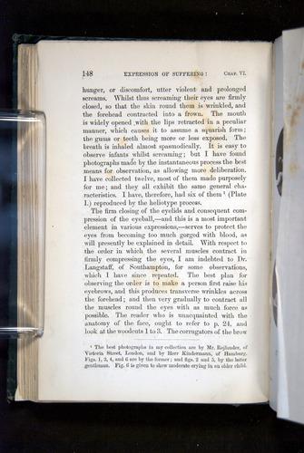 Image of Darwin-F1142-1872-148