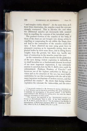 Image of Darwin-F1142-1872-160