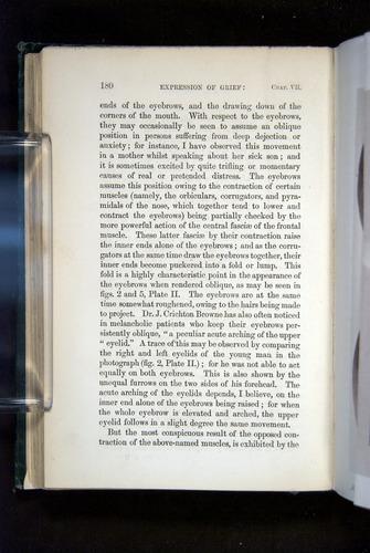 Image of Darwin-F1142-1872-180