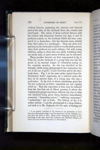 Image of Darwin-F1142-1872-182