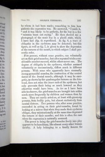 Image of Darwin-F1142-1872-183