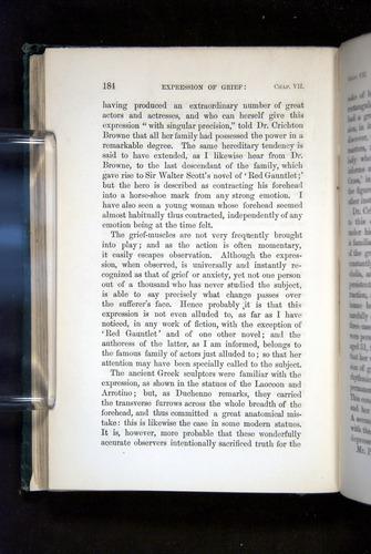 Image of Darwin-F1142-1872-184