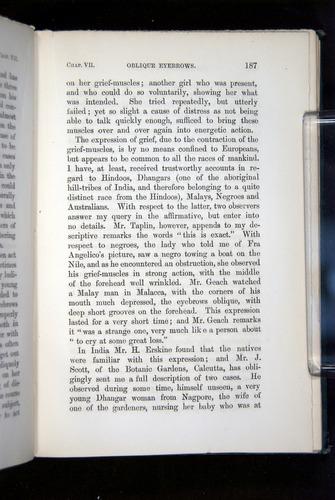 Image of Darwin-F1142-1872-187