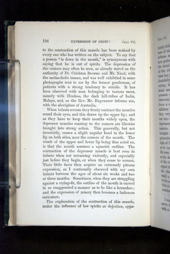 Image of Darwin-F1142-1872-194