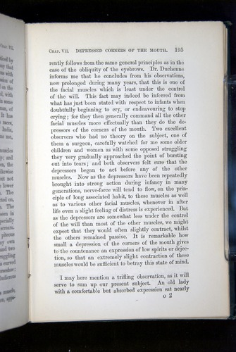 Image of Darwin-F1142-1872-195
