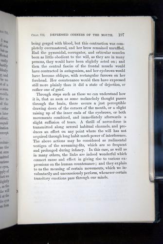 Image of Darwin-F1142-1872-197