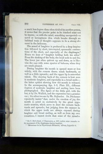 Image of Darwin-F1142-1872-202