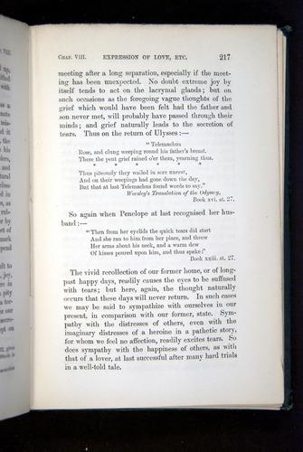 Image of Darwin-F1142-1872-217