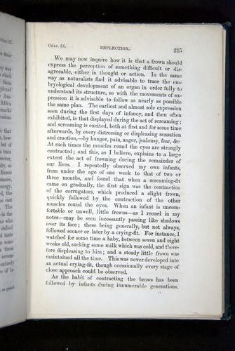 Image of Darwin-F1142-1872-225