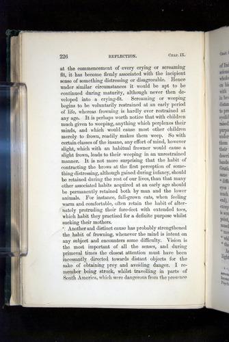 Image of Darwin-F1142-1872-226
