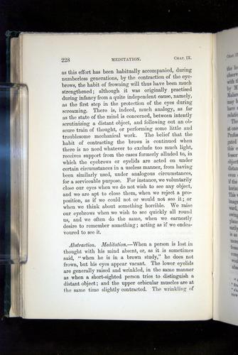Image of Darwin-F1142-1872-228