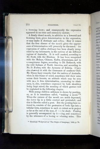 Image of Darwin-F1142-1872-232