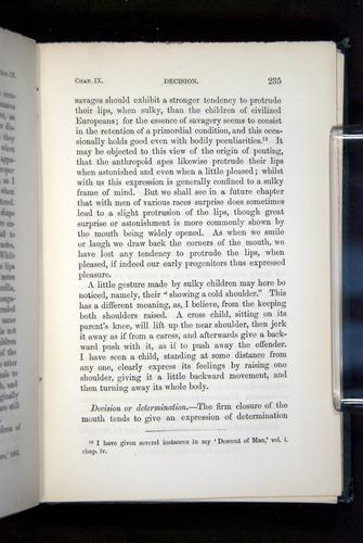 Image of Darwin-F1142-1872-235