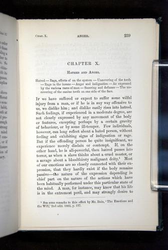 Image of Darwin-F1142-1872-239
