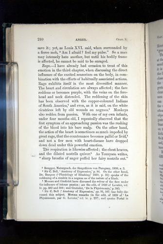 Image of Darwin-F1142-1872-240