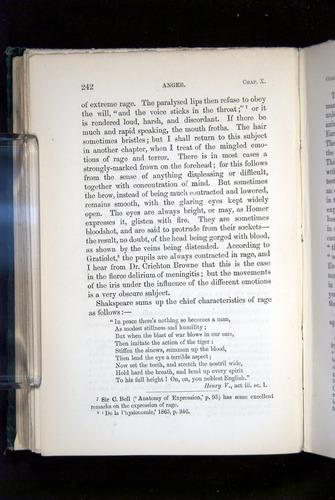 Image of Darwin-F1142-1872-242