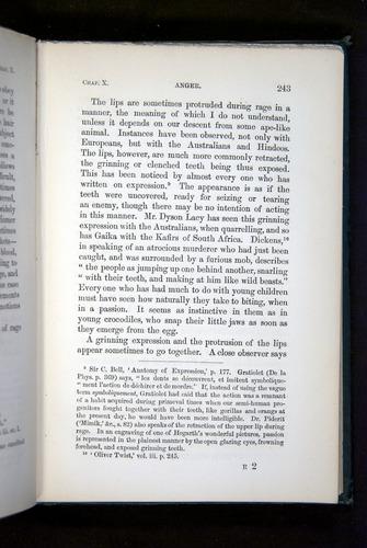 Image of Darwin-F1142-1872-243