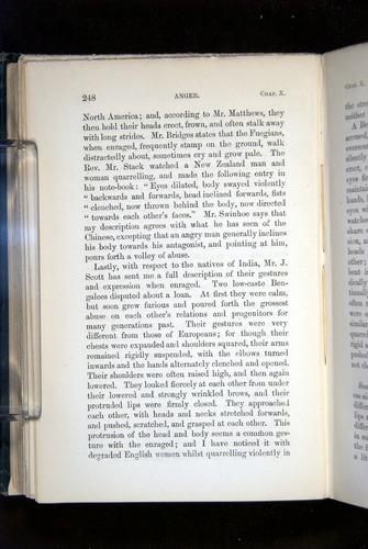Image of Darwin-F1142-1872-248