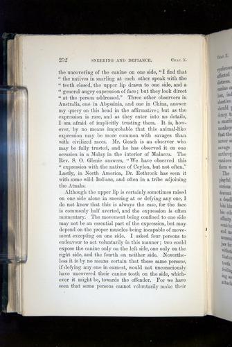 Image of Darwin-F1142-1872-252