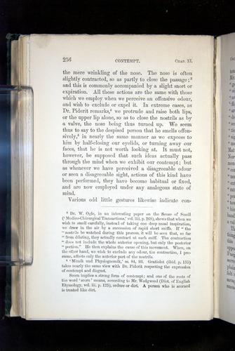 Image of Darwin-F1142-1872-256