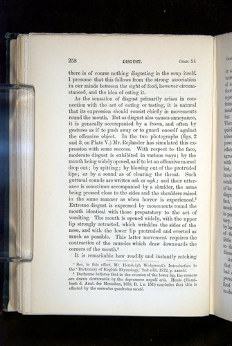 Image of Darwin-F1142-1872-258