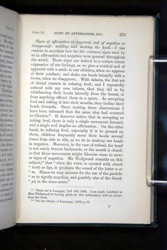 Image of Darwin-F1142-1872-273