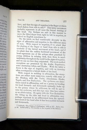 Image of Darwin-F1142-1872-277