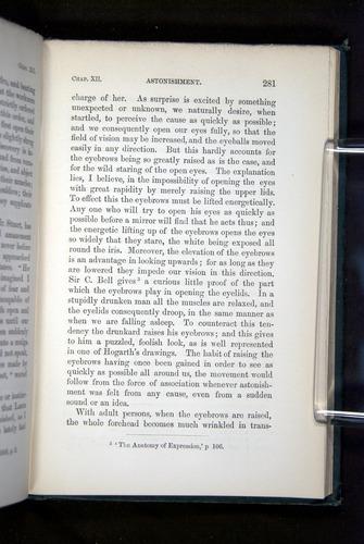 Image of Darwin-F1142-1872-281