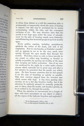 Image of Darwin-F1142-1872-283