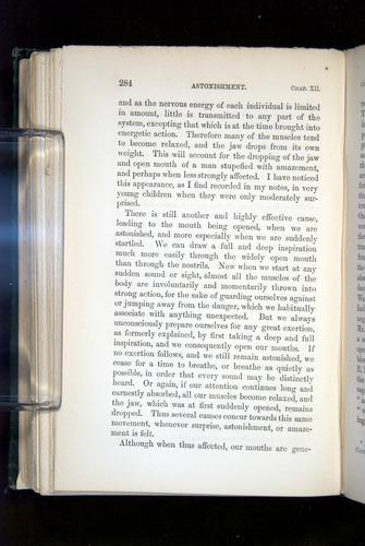 Image of Darwin-F1142-1872-284