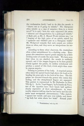 Image of Darwin-F1142-1872-286
