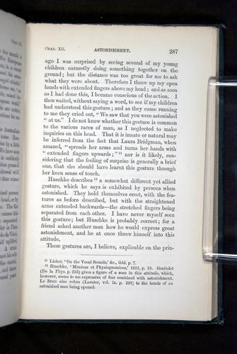 Image of Darwin-F1142-1872-287