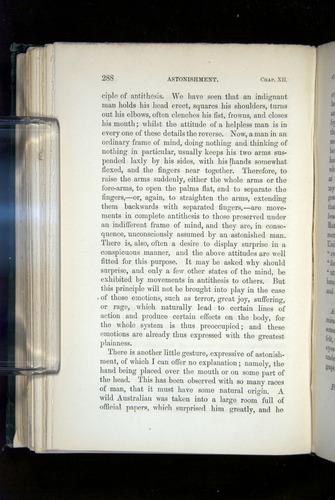 Image of Darwin-F1142-1872-288