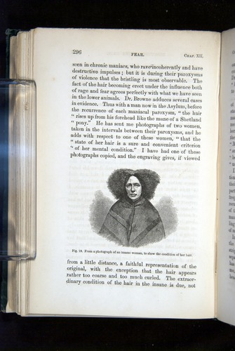 Image of Darwin-F1142-1872-296