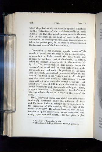 Image of Darwin-F1142-1872-298