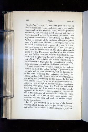 Image of Darwin-F1142-1872-300