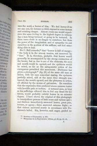 Image of Darwin-F1142-1872-305