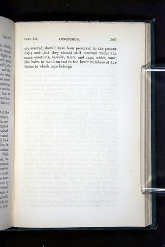 Image of Darwin-F1142-1872-309