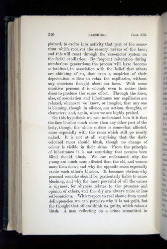 Image of Darwin-F1142-1872-346