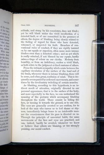 Image of Darwin-F1142-1872-347