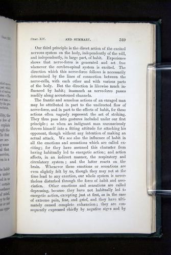 Image of Darwin-F1142-1872-349
