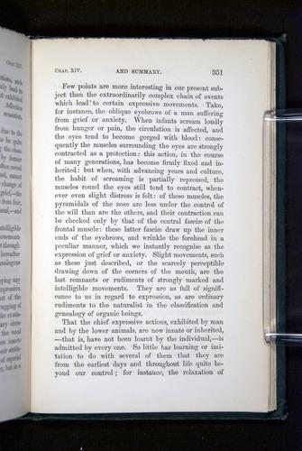 Image of Darwin-F1142-1872-351