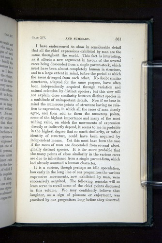 Image of Darwin-F1142-1872-361