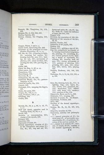 Image of Darwin-F1142-1872-369